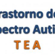 ¿Qué es el trastorno del espectro autista (TEA)?