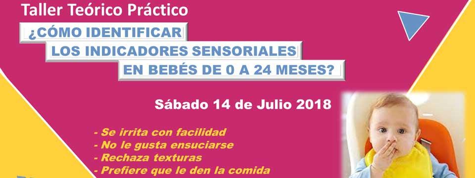 Taller Teórico Práctico ¿Cómo identificar los indicadores sensoriales en bebés de 0 a 24 meses?